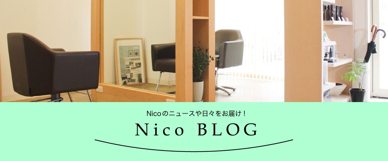 Nicoブログ